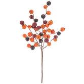 Red & Orange Berry Pick